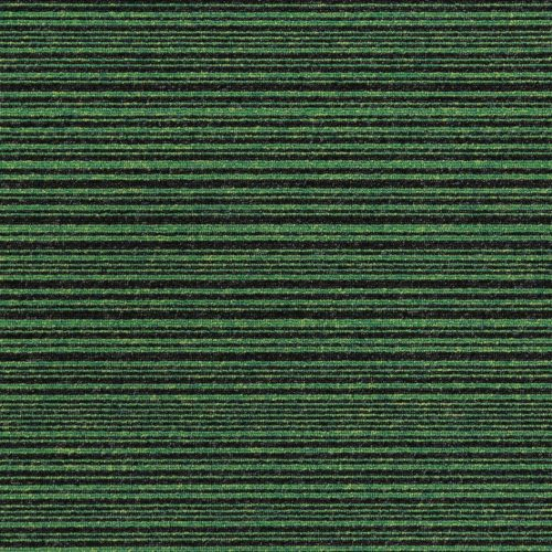 21905 Apple Green Stripe
