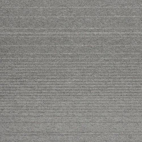 21501 Silver